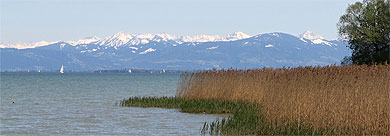 Bodensee Natur Berge